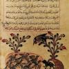 '카릴라와 디므나' 우화···8세기 아랍특권층 풍자