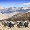 사진작가 조진수씨 네팔 지진 대참사 구호 '사진전' 8~14일 김포시민회관서