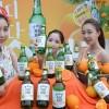 '순하리', '자몽에이슬' 과일소주 열풍에 맥주 시장 주춤