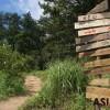 [박명윤의 웰빙 100세] 산림청의  '도시愛숲' 캠페인을 아십니끼?