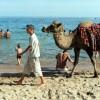 키르기스 무비자 입국, 관광객·투자자 대신 IS 몰려