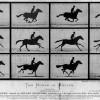 [시각 문화 3.0 시대 ③] 이미지의 연속성까지 구현한 인류: 영화·애니메이션의 탄생