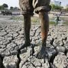 인도 마하라시트라 극심한 가뭄, 농민들 하루 9명 자살···국민스포츠 '크리켓'도 중단