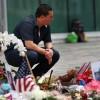 올란드 총기 난사사건, 영국 하원의원 피살 그리고 자동소총