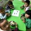 [중국 양회兩會 특집] '영양식' 보급으로 농촌 초등생 3600만명 4년새 키 1.3cm 신장