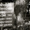 [부처님오신날-아시아불교 28] 캄보디아④스님 6만명 학살 '킬링필드' 이후 회복세