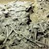 [중국 천하통일 23] 조군 40만 생매장 '장평대전' 세계 전사상 가장 참혹한 전쟁
