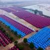 중국 신에너지 자동차 생산량 3년 연속 세계 1위