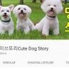 [김현중의 유튜브 스토리] '댕댕이쓰또리'와 '정브르'