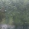 [11.8 날씨·명언] 아침부터 '비 소식'···미세먼지 오랜만에 걷혀