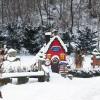 겨울철 꿈의 고향, 봉평 허브나라에서 즐기는 '루나 크리스마스'