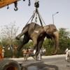 인도서 40살 코끼리, 고속도로 사고로 숨져