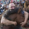 스페인 400년 전통 '야생마 길들이기'