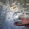시리아 총리 망명, 아사드 정권 붕괴 조짐