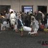 """유엔 """"예멘 인구 절반이 식량 부족"""""""