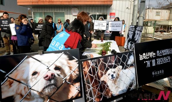 """한 동물보호단체가 경기 고양 경서애견경매장 앞에서 """"육견으로 판매돼 불법 도살된 개를 위한 시민추모제""""를 열고 있다."""