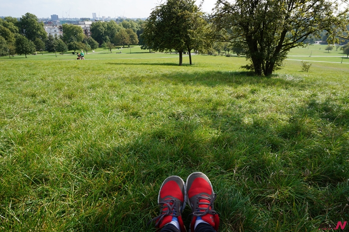 한시간을 넘게 프림로즈힐 잔디밭에 누워있었다.