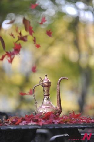 나무에 있으면 단풍이요, 떨어지면 낙엽이다. 낙엽을 태우면 커피의 향이 느껴지는 것은 낙엽이나 커피나 자연 그대로의 것에 불을 가함에 따라 빚어지는 향미의 향연인 것이다.