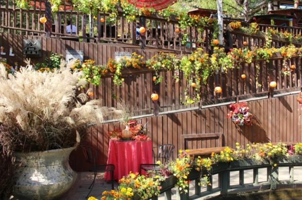 봉창 허브나라 가을축제 모습