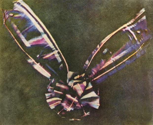 제임스 클럭 맥스웰이 1861년 만들어낸 최초의 컬러 사진