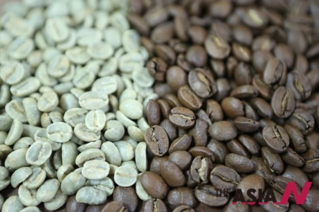 커피 씨앗에 들어 있는 카페인의 함량은 생두와 원두가 비슷하다. 로스팅을 거쳐도 카페인의 함량은 큰 변화가 없다.